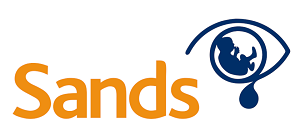 IT-support-hampshire-sands-logo